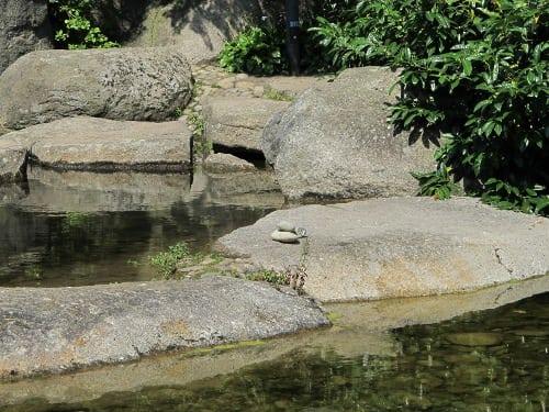 Stones below where water falls